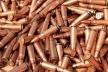 У мешканця Львівщини вилучили майже 2 сотні патронів