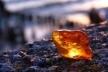 Бурштинова оборудка року: непримітний львів'янин скупив 200 гектарів землі з покладами цінного каміння
