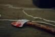 На Львівщині син попросив приготувати млинці для матері, а після вечері її зарубав (Відео)