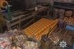 Підробляли навіть туалетний папір. На Львівщині виявили підпільний міні-завод (Фото)