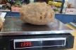 На Львівщині фермер виростив гігантську картоплю