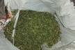 Патрульні виявили в перехожого кульок з марихуаною