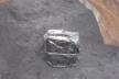 Прикордонники Львівського загону знайшли 14 ящиків сигарет