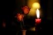 Львів'янку, що зникла дорогою додому, знайшли мертвою (Фото)