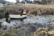 На Львівщині Audi злетіла в озеро: четверо загиблих