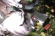 На Яворівщині поліцейські вилучили у чоловіка патрони, вибухівку та боєприпаси