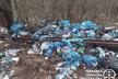 Понад 700 кв м стихійного сміттєзвалища у Трускавці: встановлюють причетних (Фото)