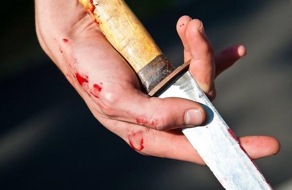 Вбивство на Драгоманова: чоловіка госпіталізовано до закладу з надання психіатричного нагляду з суворим наглядом