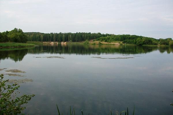 Вода у водоймах Львова брудна