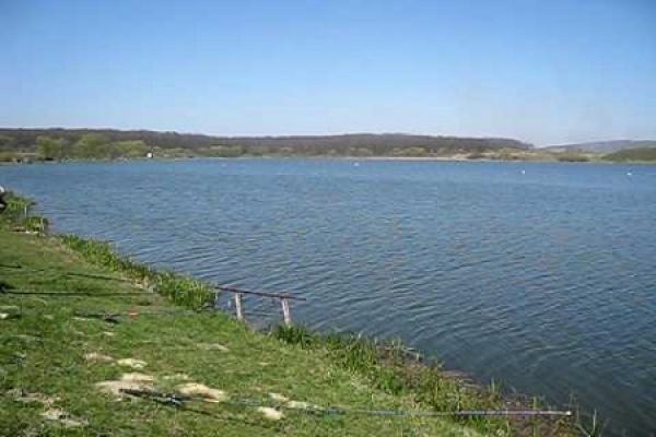 Одне із озер на Львівщині «кишить» небезпечною інфекцією