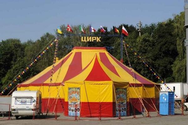 Цирк з тваринами – це ганебне явище, яке має зникнути, – зоозахисниця