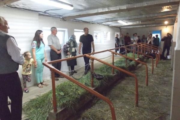 У Самбірському районі відкрили новозбудовану молочну ферму