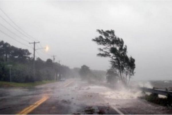 Майже 400 населених пунктів Львівщини знеструмлено внаслідок буревію