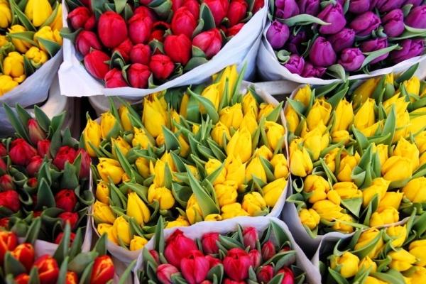 Тротуар біля Стрийського ринку у Львові поділили між перехожими і продавцями квітів