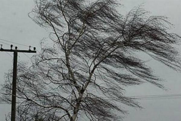 Негода наробила шкоди у Львові (Фото)
