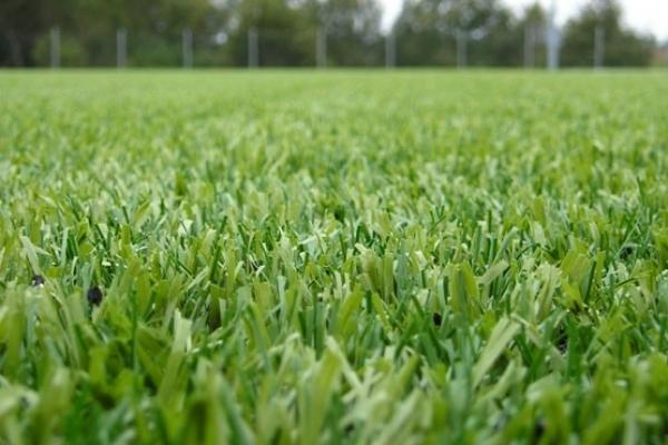 На Львівщині створять ще 18 полів з штучним покриттям