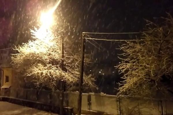 Львівщину знову засипає снігом (Відео)