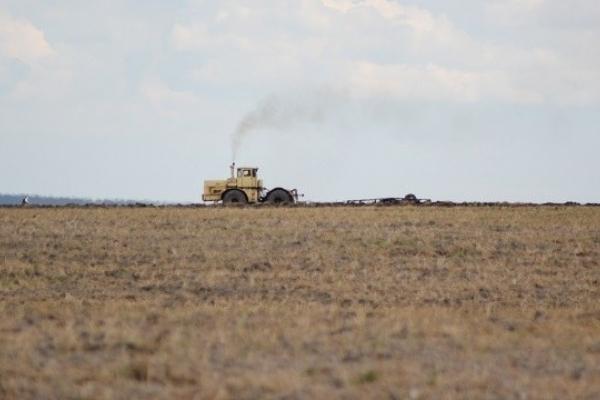 Одна із сільрад на Золочівщині незаконно передала фірмі 200 га землі в оренду