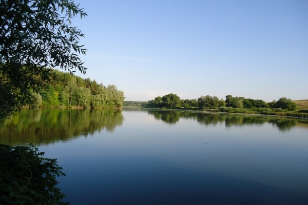 На Львівщині виставили на аукціон право оренди на 6 ставків