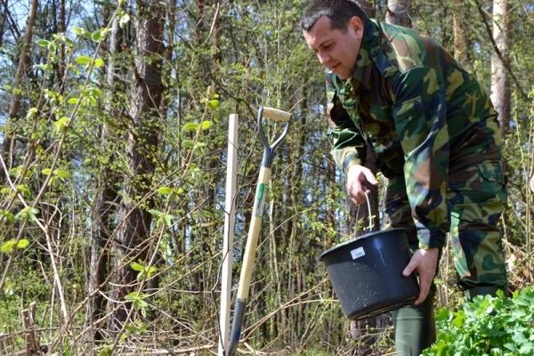 В Львівській області встановили новий рекорд України