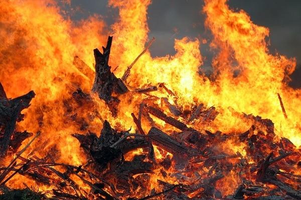 На околицях Львова рятувальники досі гасять загоряння торф'яних полів
