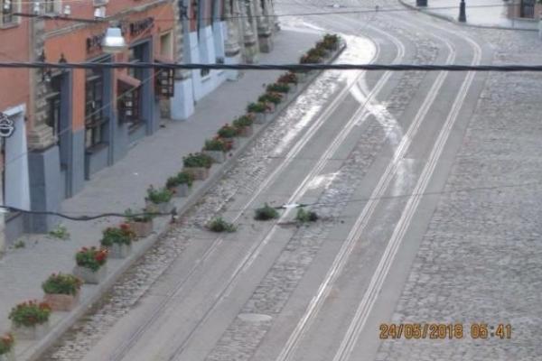 П'яні іноземці пошкодили клумби в центрі Львова