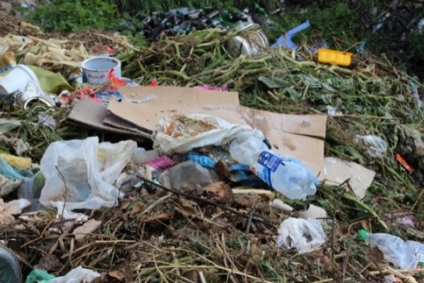 Львівський перевізник незаконно викинув сміття на Житомирщині