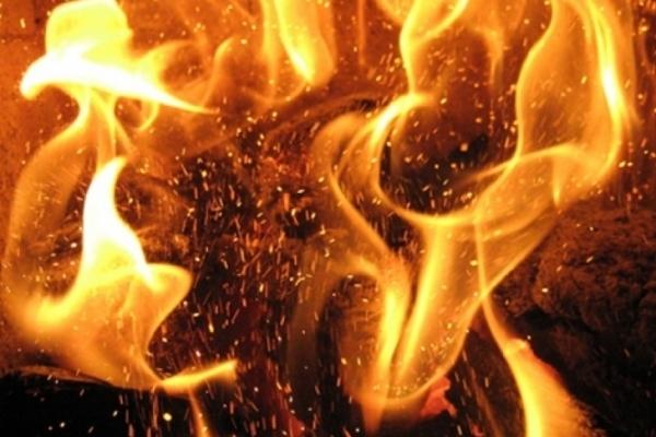 Масштабна пожежа торфу на Жовківщині: вогонь гасили 27 рятувальників