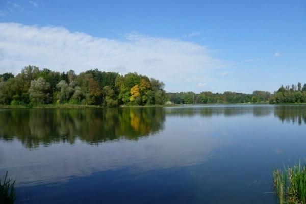 Озеро розбрату: елітну землю на Львівщині замість атовців отримали… бізнесмени