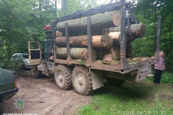 Львівські патрульні виявили автомобіль з деревиною без дозвільних документів
