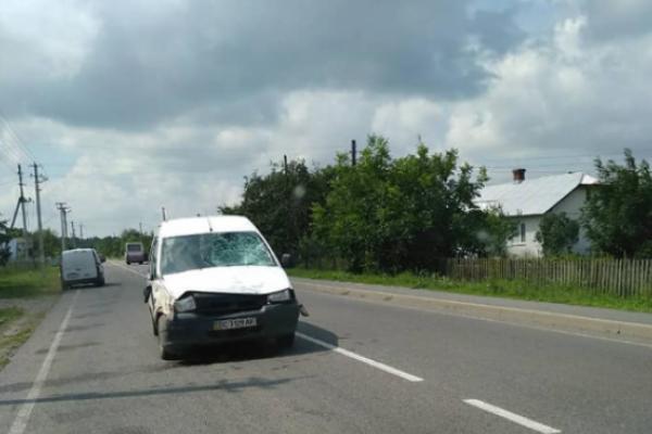 Слідчі оголосили депутату міськради на Львівщині підозру в скоєнні злочину (Відео)