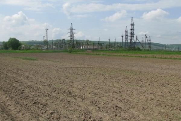 Сільрада на Золочівщині незаконно передала фірмі 277 га земель