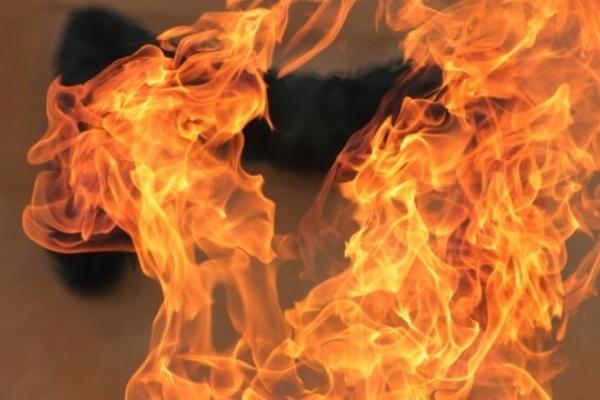 У Львові ліквідували пожежу в квартирі багатоповерхівки