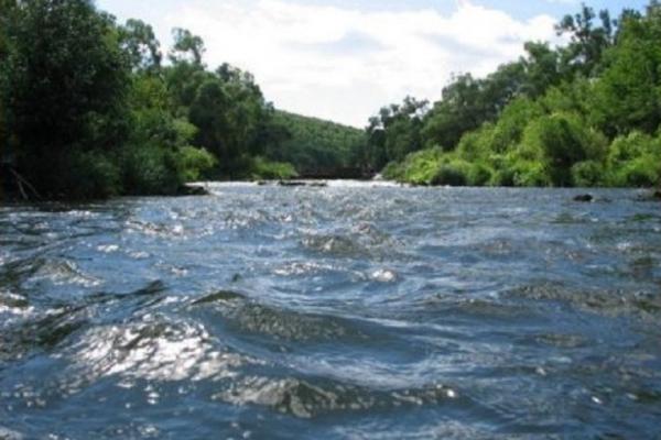Чим забруднені львівські річки
