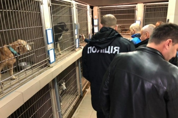 На Львівщині відкрили 11 кримінальних проваджень за жорстоке поводження з тваринами