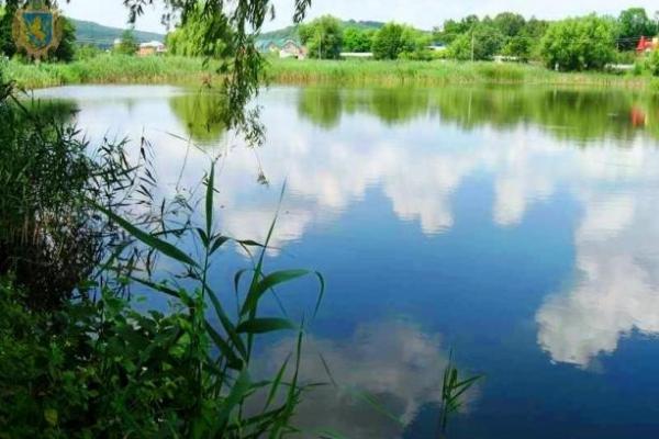 Три ставки на Львівщині віддали орендарям