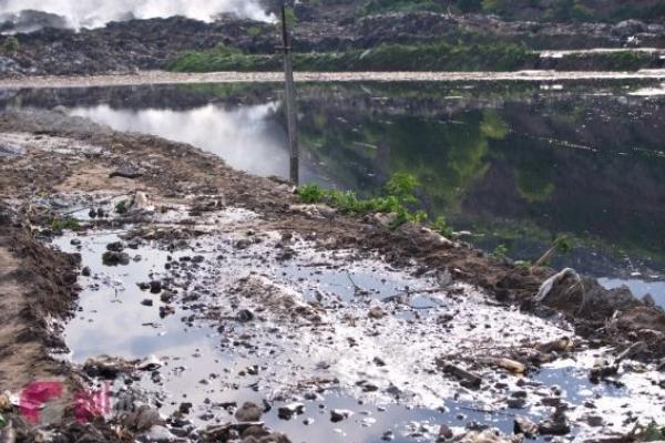 Сміттєвалище Львова негативно впливає на ґрунти