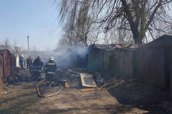 На Львівщині палаючий сухостій підпалив дев'ять будівель (Фото, відео)