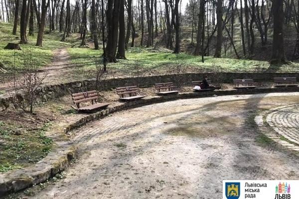 У Львові в Стрийському парку висадили 10 кущових магнолій