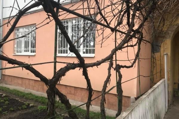 На Львівщині 4-річний хлопчик загинув через ворону (Фото)