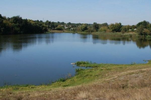 На Львівщині у ставку виявили труп літнього чоловіка