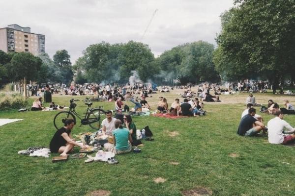 У Львові заборонять відвідувати парки через кліщі