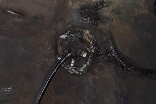 Затримали юнака, який приховав у паливному баку автомобіля бурштин (Фото)