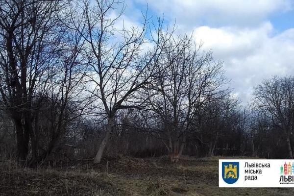 У Львові створять новий парк