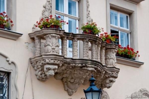 Львівська міськрада оголосила конкурс «Квітучий Лев»