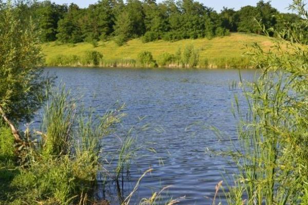 На Львівщині у ставку виявили мертвим 26-річного молодика