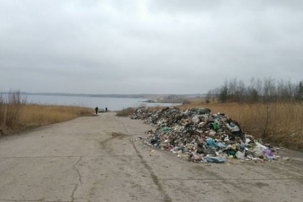 На Львівщині утилізували рештки свиней в озері