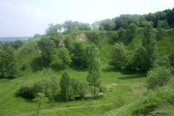 Святовидове поле. Мандрівка дохристиянським Львовом (Фото)
