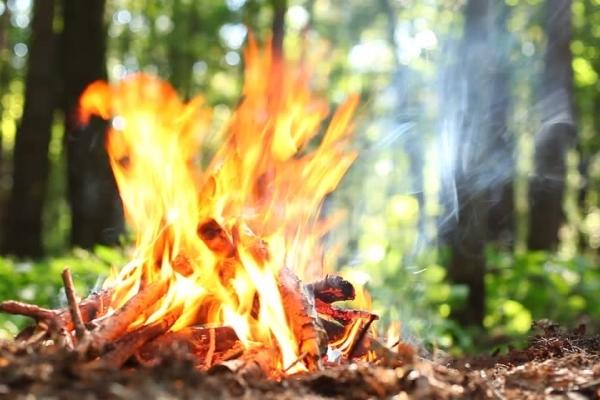 Відпочинок із вогнем. Де у Львові та області можна влаштувати пікнік біля багаття (локації, карта)