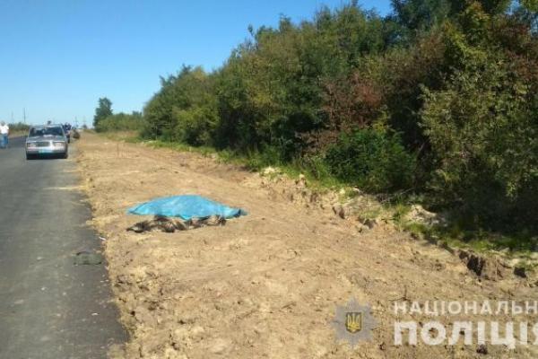 На Львівщині затримали винуватця загибелі велосипедиста